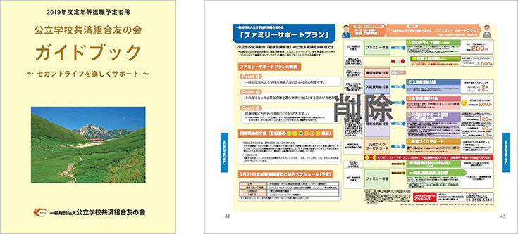 ガイドブック P42-43削除